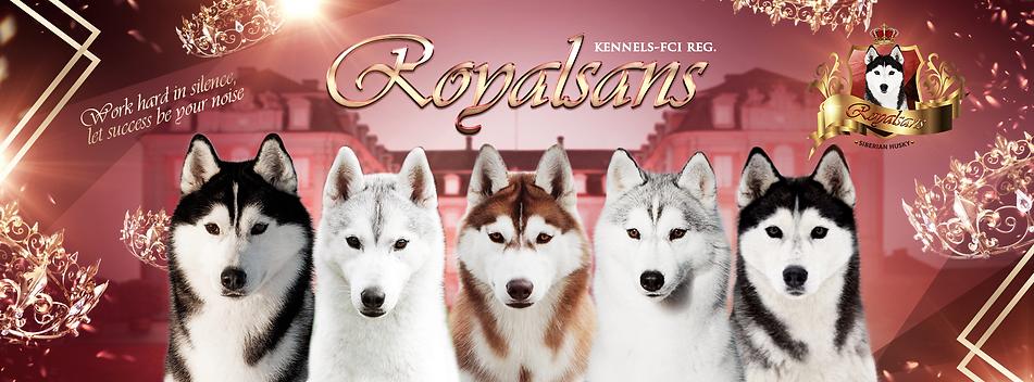royalsans.png