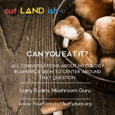 out.LAND.ish Episode 3, Fungus Amongus!