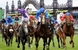 Race Course Transfer