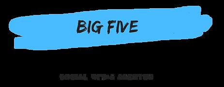 BigFive-Logo-NEU-PNG-transparent.png