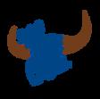 94.9 The Bull Logo.png