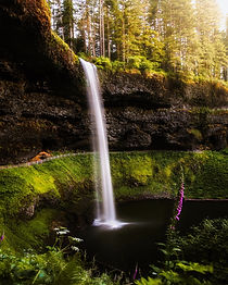 waterfalls-surrounded-by-trees-2480584.j