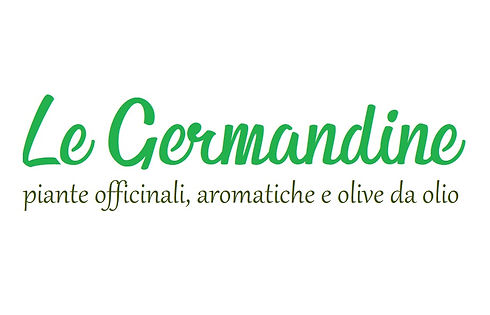 logo-germandine.jpg