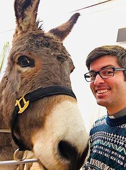 Donkey.jpeg