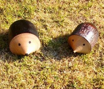 Hedgehogs.jpeg