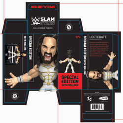 Seth Freakin' Rollins action figure packaging