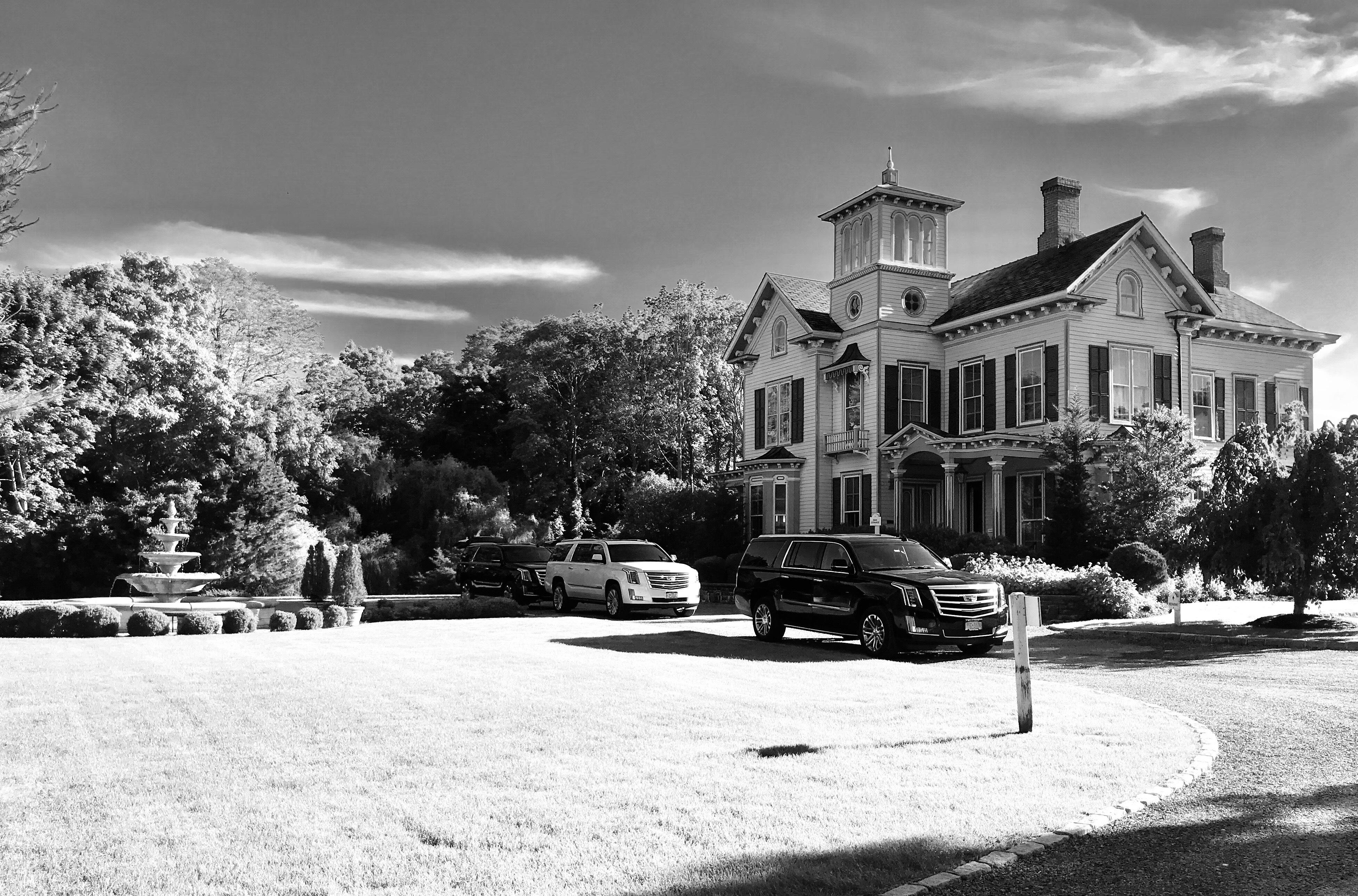 Hamptons Bluebird Limo image