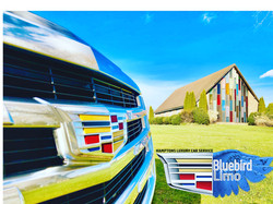 Bluebird Limo Car Service Image