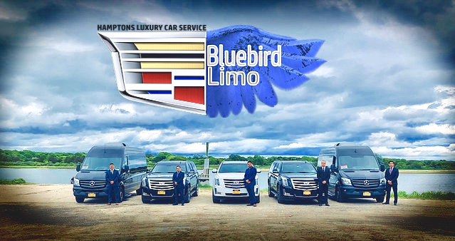 Hamptons Bluebird Limo Logo & fleet