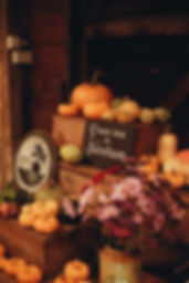 Display of vegetables at function in Christmas Pie Barns Farnham