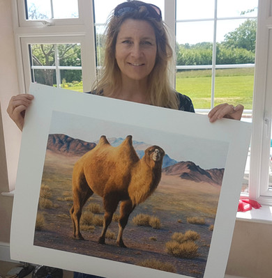size of camel print