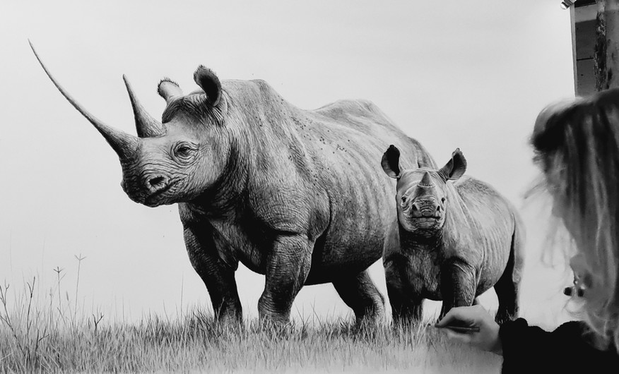 Black rhino and calf - in progress