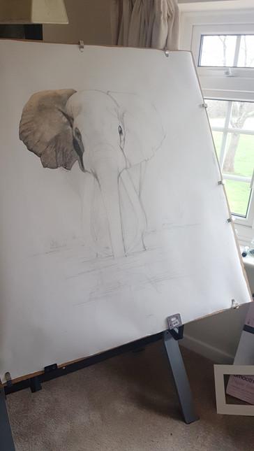 ahmed sketch