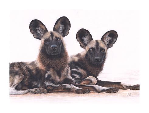 'We're All Ears' - ORIGINAL