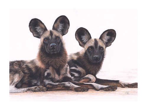 'We're All Ears' - ORIGINAL - POA