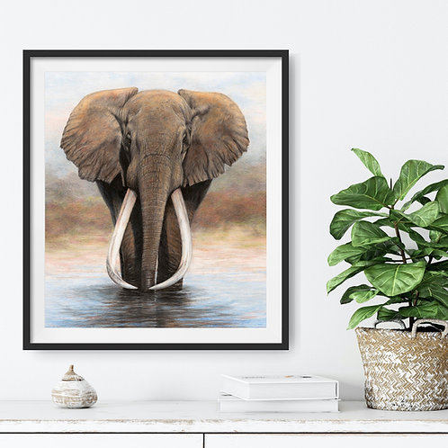 Ahmed - 59 x 72 cm cm - other sizes available