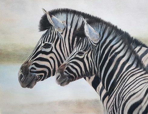 Stand By Me - Zebra mother and foal