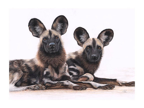 We're All Ears - Signed Limited Edition Print