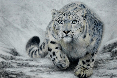On Silent Paw - Signed Limited Edition Print