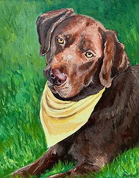 Monica List dog portrait of Charlie - 16x20.jpg