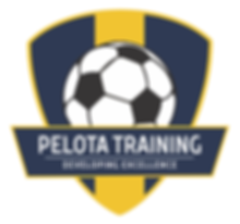 Pelota Training - the best private soccer technical training in the Washington DC area