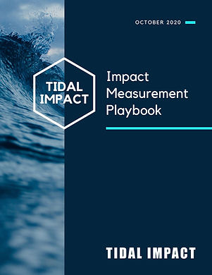 Impact Measurement Playbook.jpg