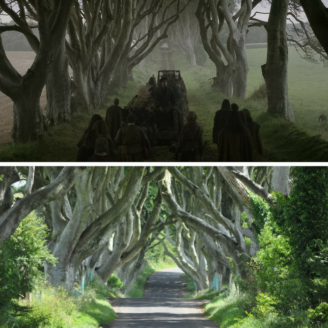 The Dark Hedges (Game of Thrones) Kingsroad