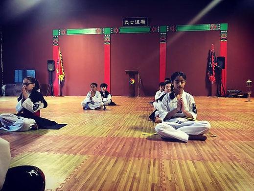 #taekwondo #hapkido #traditionalmartiala
