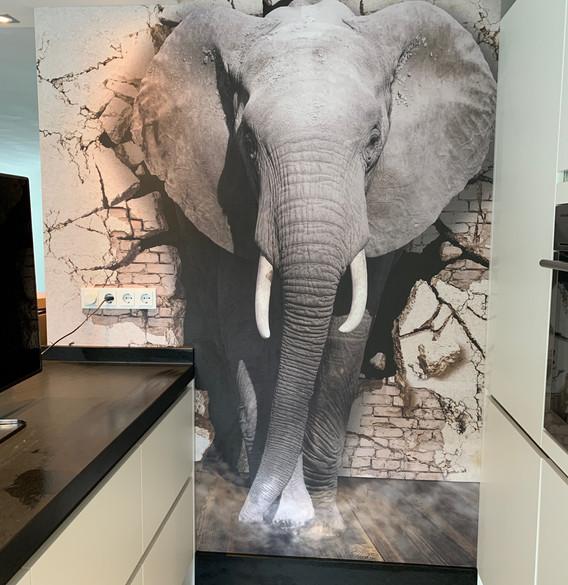 Fotobehang olifant