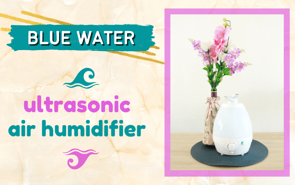 Blue Water Ultrasonic Air Humidifier (Dual Nozzle) | Product Review | A Lifestyle Blog by Andi