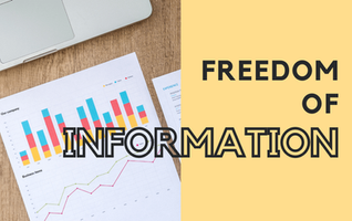 What is the Freedom of Information Program?