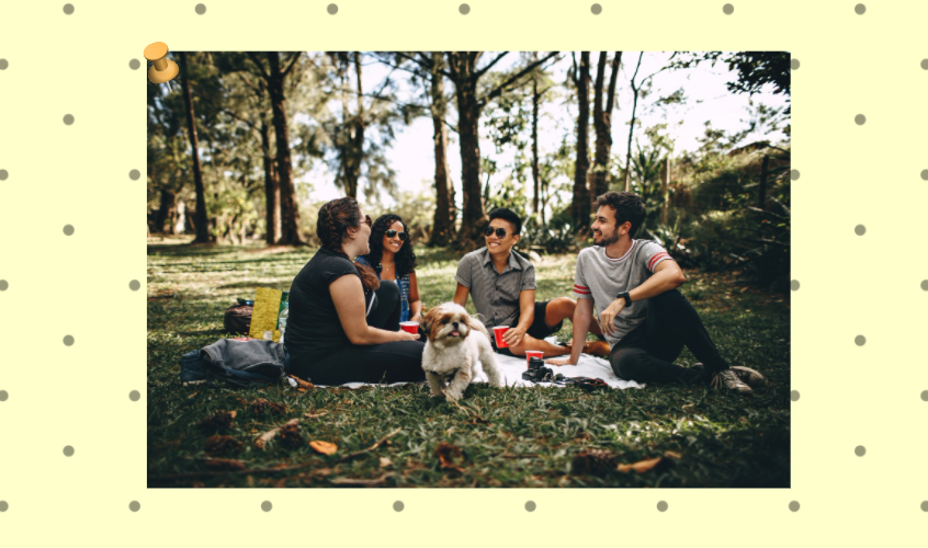 Dealing with Nosy Relatives Blog Post | A Lifestyle Blog by Andi | Four people having a good time at the park, dog