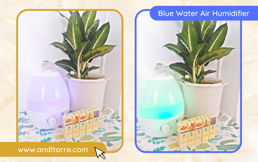 Product Review: Blue Water Ultrasonic Air Humidifier (Dual Nozzle) Cool Mist | A Lifestyle Blog by Andi | Philippines