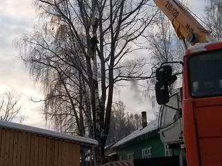 Удаление сухого тополя над домом с краном.