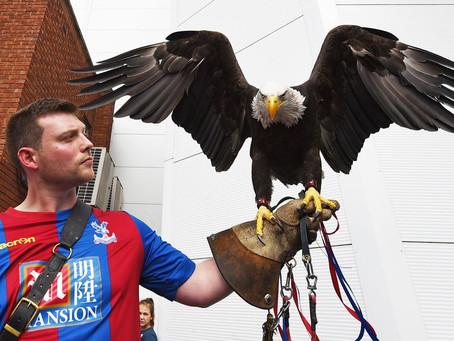 Η αγάπη των οπαδών της Crystal Palace προς τον αετό τους