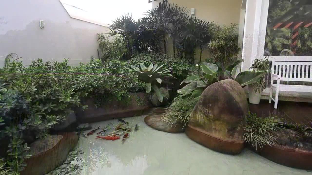 Ecosys Ornamental ponds.avi