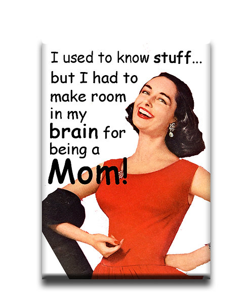 I used to know stuff...but- Fridge Magnet
