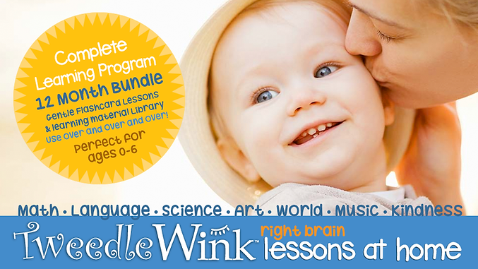 tweedlewink-lessons-at-home-COMPLETE.png