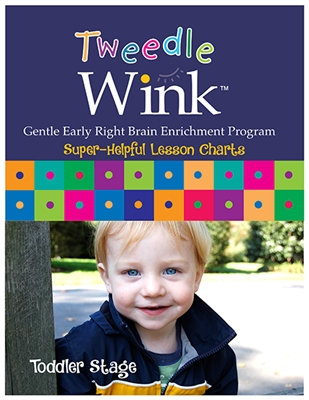 TweedleWink Super-Helpful Lesson Charts: 28-36 mos. (digital)
