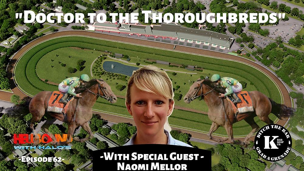 Horse Racing, Horse Veterinarian, Taking care of race horses, race horses