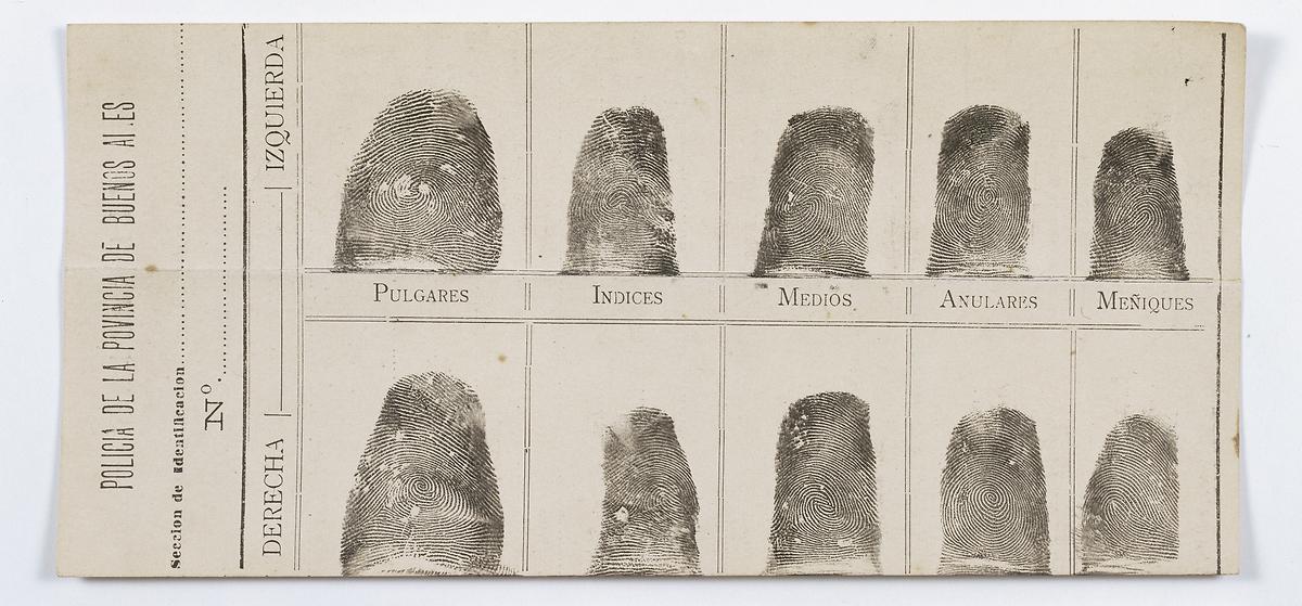 Francisca Rojas Fingerprints