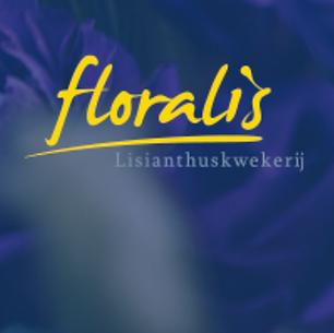 floralis.png