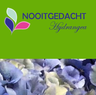 nooitgedacht.png