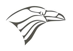 Raven Poly Art / Nath Polyarts