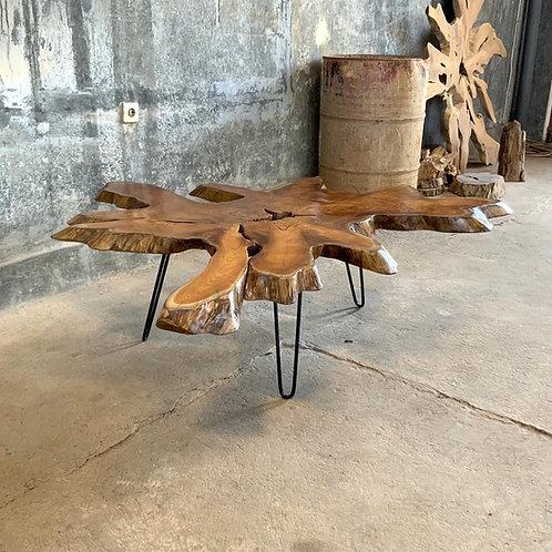 Industrial Coffee Table - Live Edge Teak Slice / Iron Legs