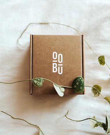 OOBU_BoxMockUp.jpg