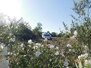 Camping (6).JPG
