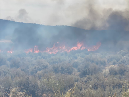 Red Mountain Trail Fire Update
