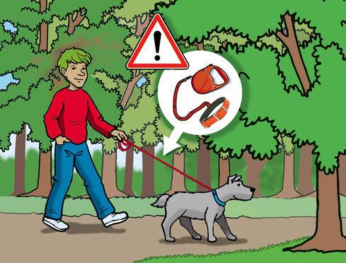 reglement-camping-chien-s.jpg