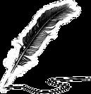 pluma-de-escribir-png_edited.png